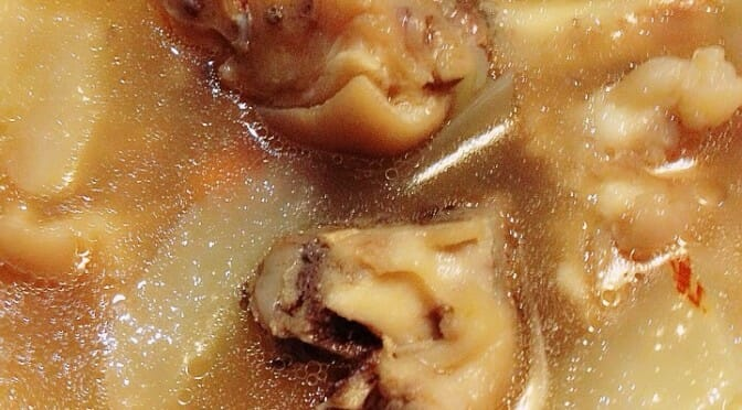 Slow-Simmered Honey Dates, Old Cucumber and Pork Trotter Soup (蜜枣老黄瓜猪蹄老火汤)
